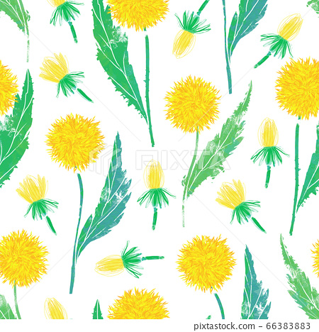 Digital hand drawn seamless pattern with bright dandelions on a white background 66383883