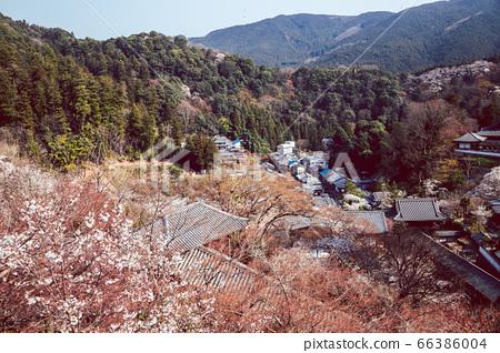 Hasedera temple and town view at spring in Nara, japan 66386004