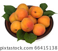 Fresh apricot fruits in a plate isolated on white background 66415138