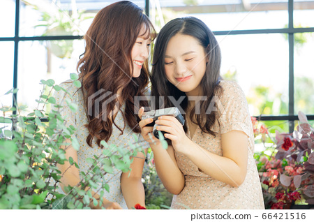 Women, couple, lifestyle 66421516