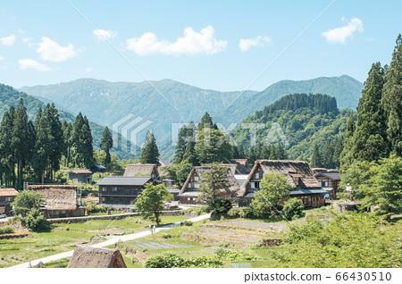 Aikura Gassho-zukuri village in early summer 66430510