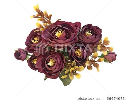 花 水彩 素材 66474071