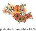 꽃 수채화 재료 66474078