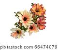 꽃 수채화 재료 66474079