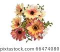 꽃 수채화 재료 66474080