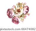 꽃 수채화 재료 66474082