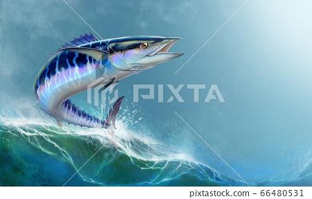 Spanish Mackerel wahoo dark blue fish big fish on white realistic illustration. Oceanic big mackerel green predatory fish with open mouth on a background of waves horizontal format. 66480531