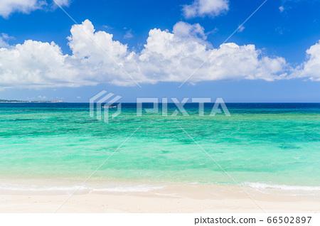 남국 이미지 오키나와 여름 이미지 66502897