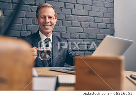 Handsome elderly male person posing on camera 66516353