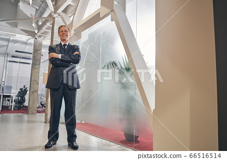 Delighted elderly male person working in office 66516514