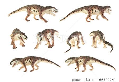 Prestosuchus , dinosaur on white background . 66522241