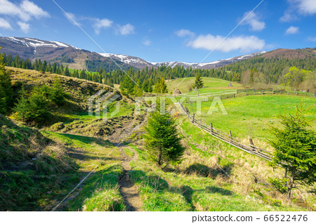 rural landscape in mountains. beautiful green 66522476
