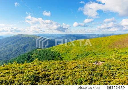 wonderful mountain landscape in summer. beauty of 66522489