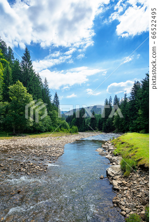 river in the mountain landscape. beautiful nature 66522495