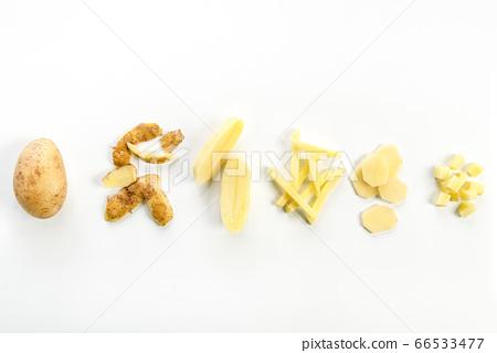 Potatoes evolution 66533477