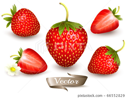 Whole and slice of strawberry. Realistic 66552829