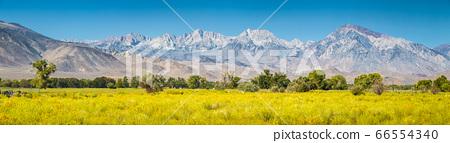 Eastern Sierra Nevada mountains in summer, Bishop, California, USA 66554340