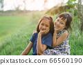 Happy little child girlfriends in green  field 66560190