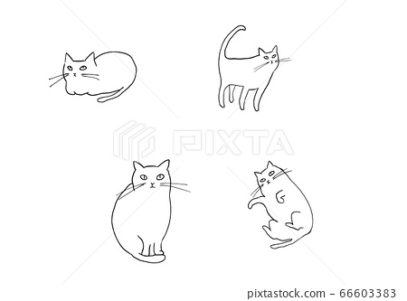 Four cats 66603383