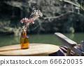 vase 66620035