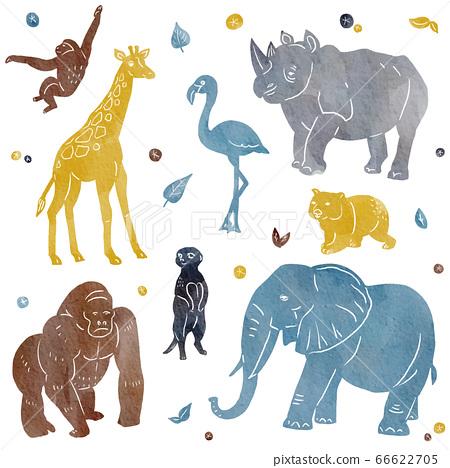 野生動物園動物的自然水彩風格插圖集 66622705