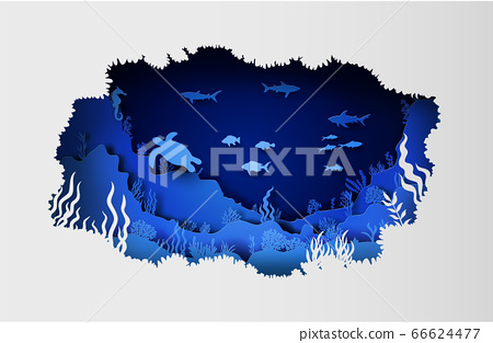 wildlife under sea 66624477