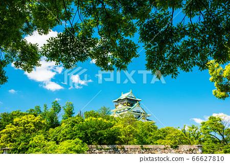 오사카와 신록 66627810