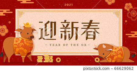 Chinese new year banner 66629062