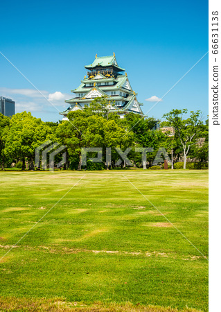 오사카와 신록 66631138