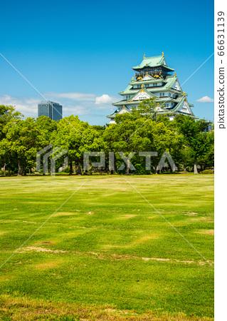 오사카와 신록 66631139