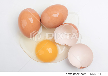 Close up of different kind of eggs 058 66635198
