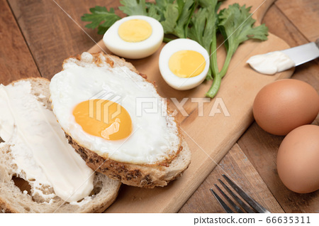 Close up of different kind of eggs 161 66635311