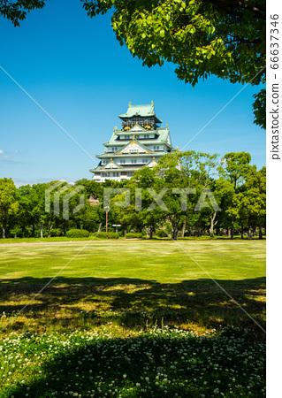 오사카와 신록 66637346