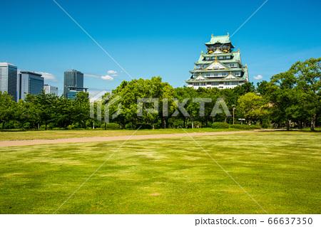 오사카와 신록 66637350