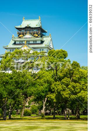 오사카와 신록 66639032
