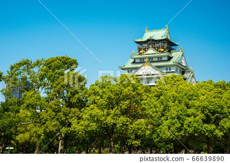 오사카와 신록 66639890