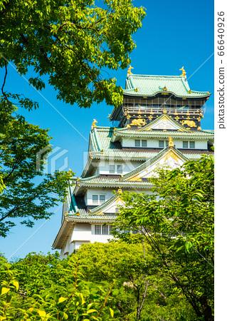 오사카와 신록 66640926