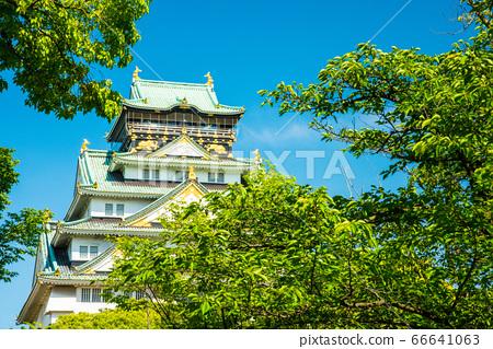 오사카와 신록 66641063