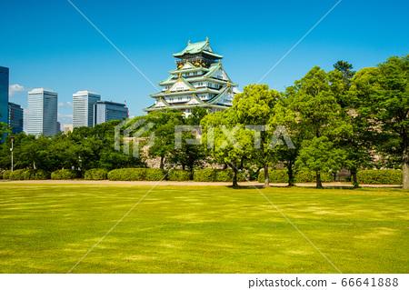 오사카와 신록 66641888
