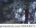 雨水坑2 66648671