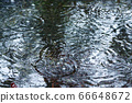 雨水池3 66648672