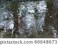 雨水坑4 66648673