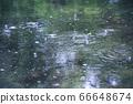 雨水坑5 66648674