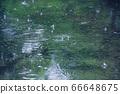 雨水坑6 66648675