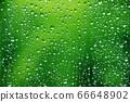 玻璃上的水滴9 66648902