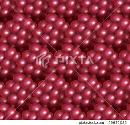 Illustration of grapes (seamless) 66653086