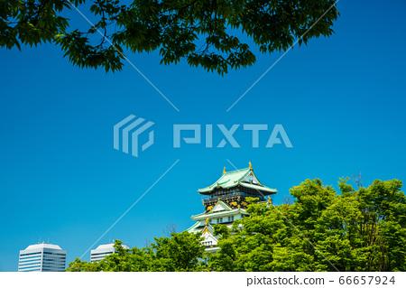 오사카와 신록 66657924