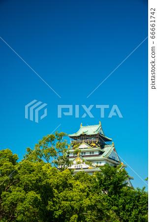 오사카와 신록 66661742