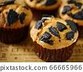 黑餅乾鬆餅(水平位置) 66665966