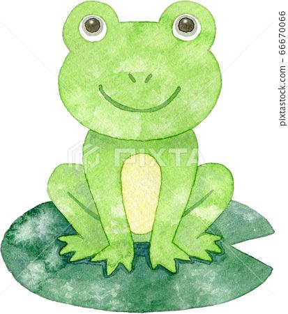 一隻微笑的青蛙坐在荷葉上 66670066